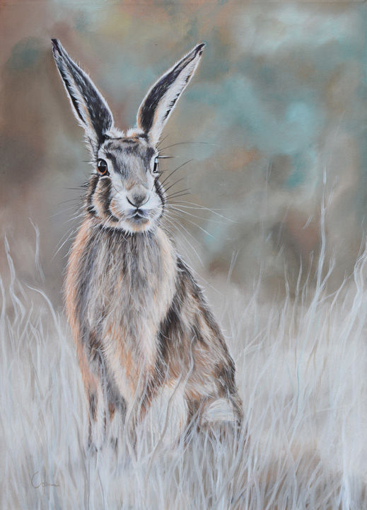 'Hare at Dawn'